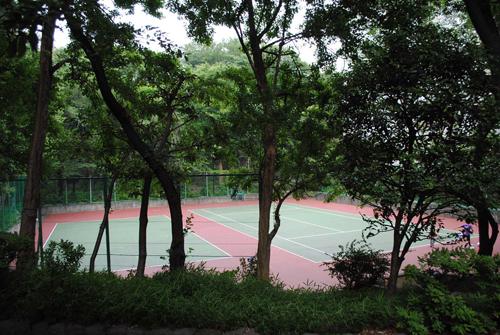 サンシティのテニスコート