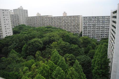 トトロの森のあるマンション