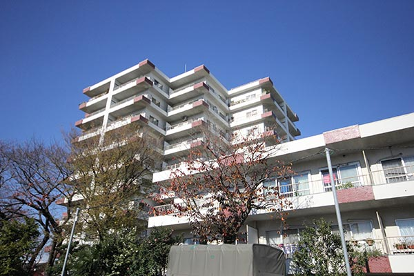 桜新町、専用庭40平米のヴィンテージマンション~弦巻リハイム~
