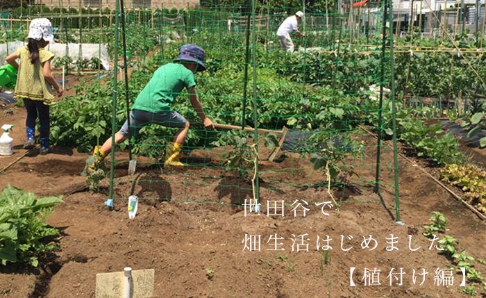 世田谷で畑生活はじめました【植付け編】
